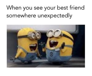 Best, find, and minions image