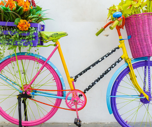 beautiful, bike, and colours image