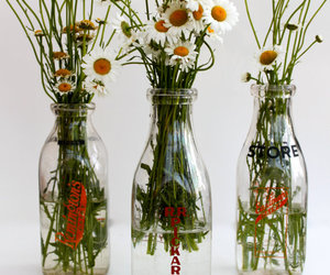 bottles, daisy, and flowers image