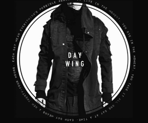 marie lu, day wing, and daniel altan wing image