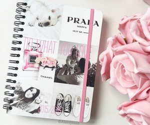 pink, Prada, and rose image