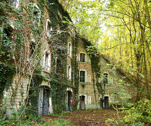 abandoned, overgrown, and building image