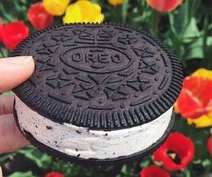 oreo, delicious, and flowers image
