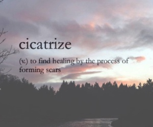 definition, quotes, and cicatrize image
