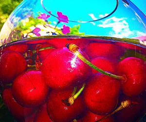 cherries and fruity image