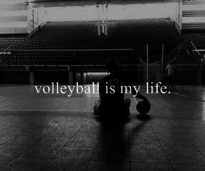 life and volleyball image