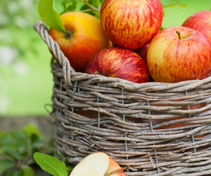apple and basket image