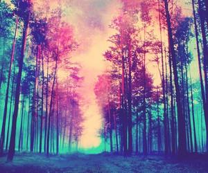 arboles, colours, and tumblr image
