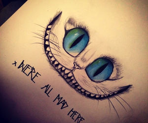 cat, alice in wonderland, and mad image
