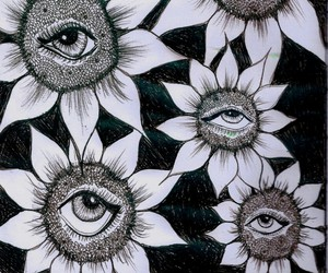 eyes, black and white, and sunflowers image