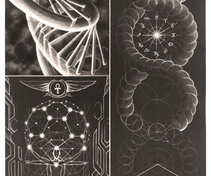 DNA, geometry, and flower of life image