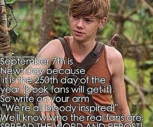 newt, thomas brodie sangster, and cute image