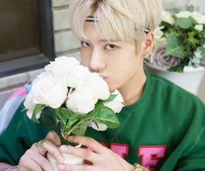beauty, flowers, and got7 image