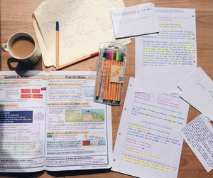 school, student, and study image