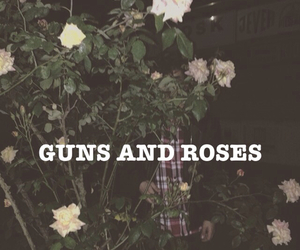 rock, roses, and band image