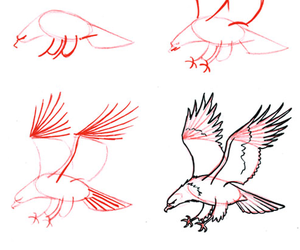 eagle and drawing image