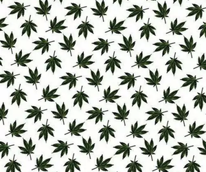 weed, background, and wallpaper image