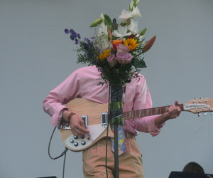 guitar, band, and flower image