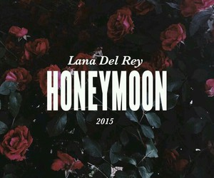 honeymoon, lana del rey, and grunge image
