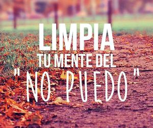 citas and frases image
