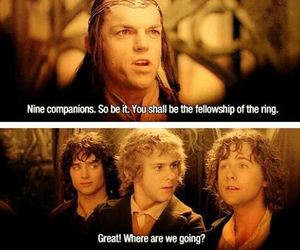 LOTR, the lord of the rings, and pippin image