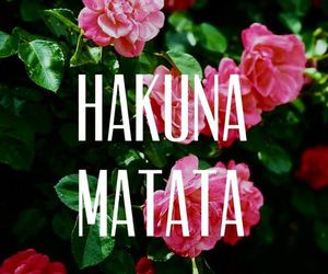 hakuna matata, flowers, and quotes image