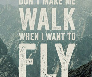 quotes, fly, and walk image