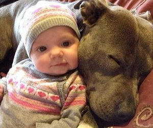 dog and baby image
