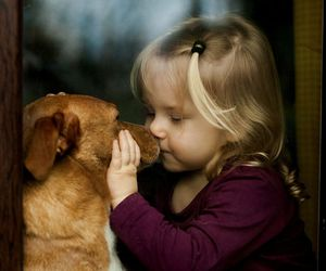 dog, child, and puppy image