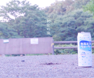 juice, word, and calpis image
