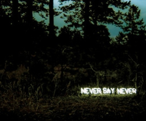 typography and never say never image