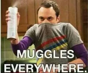 harry potter, muggles, and funny image