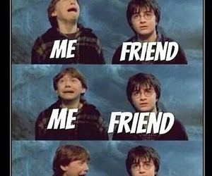 fangirl, funny, and harry potter image