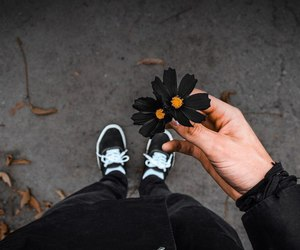 black, flowers, and grunge image