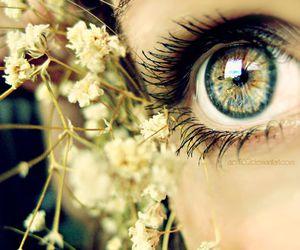 eyes, eye, and flowers image