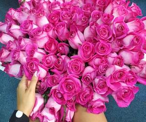 rose, fashion, and girl image