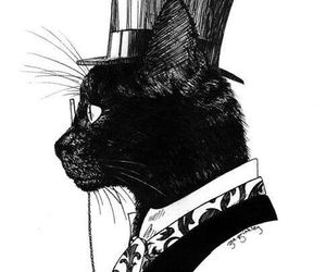 cat, black, and illustration image