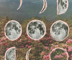moon, flowers, and pink image