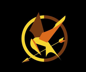 mockingjay, the hunger games, and thg image