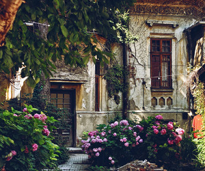 bucharest, flowers, and old image