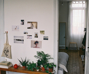 plants, pretty, and vintage image