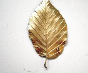 gold and leaves image