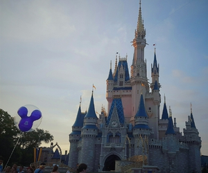 castle, wheredreamscometrue, and mikey image