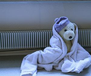 bath, lovely, and bear image