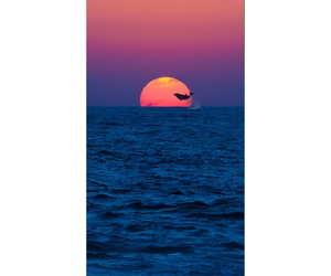 background, colors, and sunset image