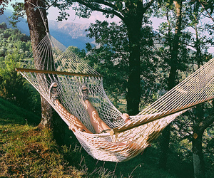 nature, summer, and hammock image