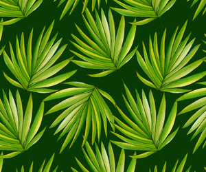leaves, palms, and patterns image
