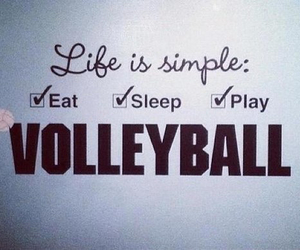 volleyball, life, and eat image