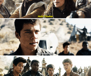 the maze runner, thomas, and tmr image