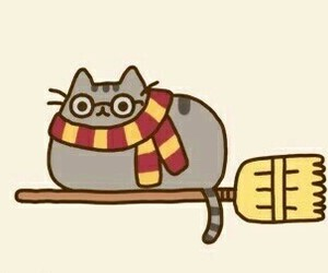 harry potter, cat, and pusheen image